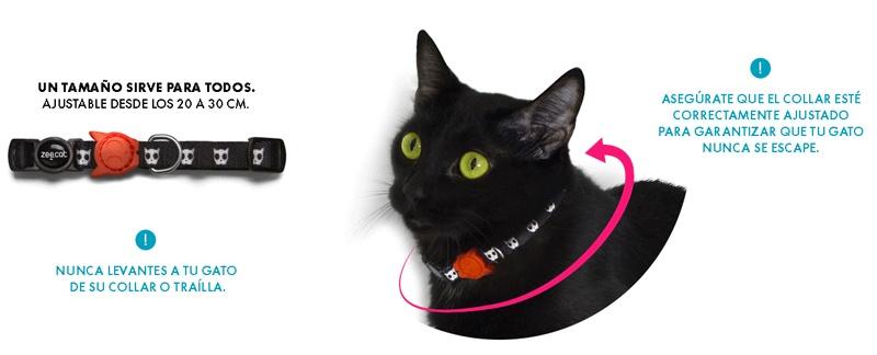 Zee Cat medida cuello gato