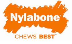 Nylanone logo