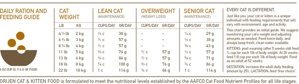 Orijen Cat & Kitten alimentación